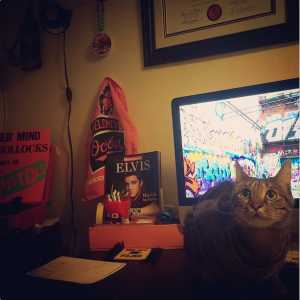 workspace with O's gear and a kitty