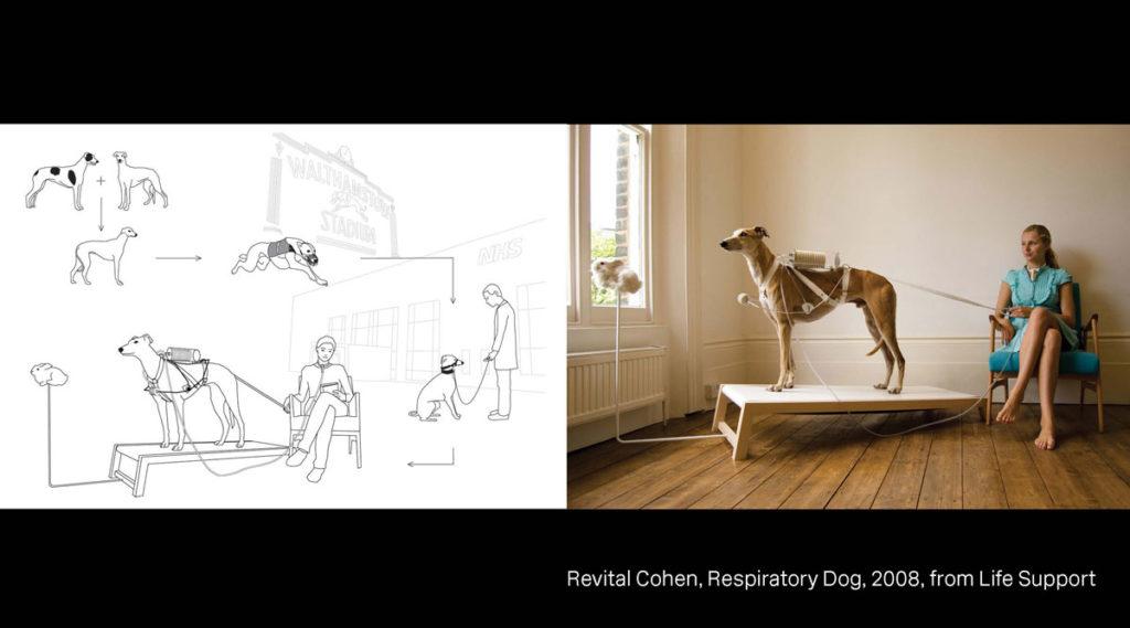 revital-cohen-respiratory-dog-design-futurism